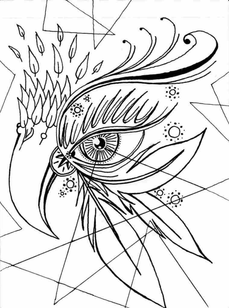 128-bird eye