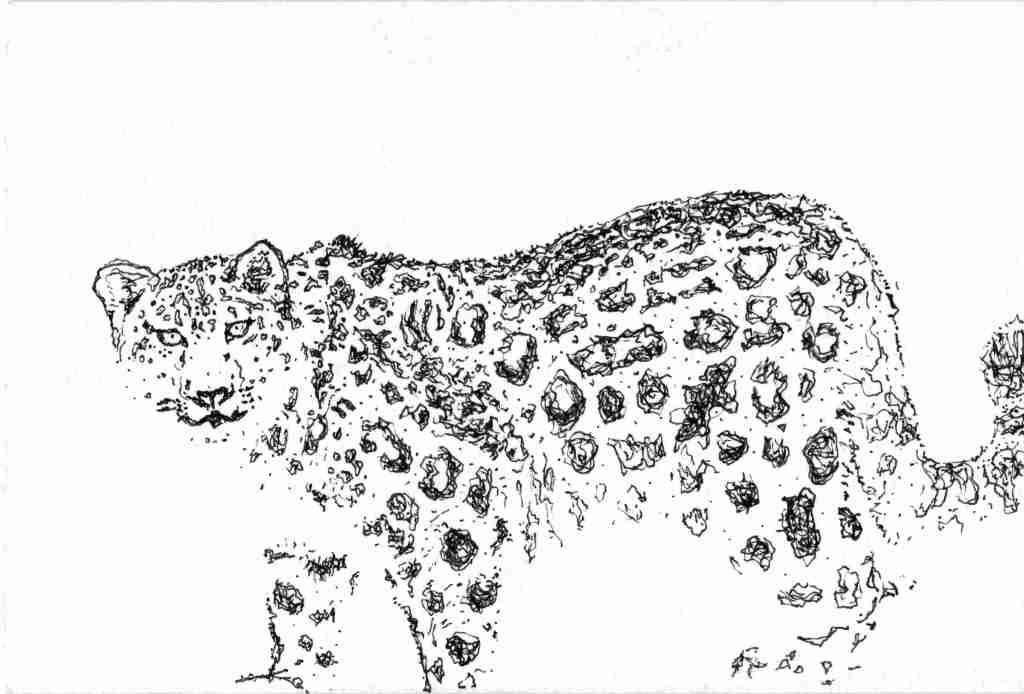 mod léopard des neige