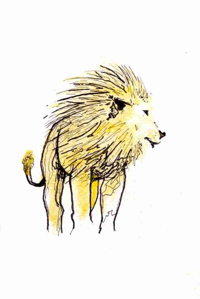 mod lion2