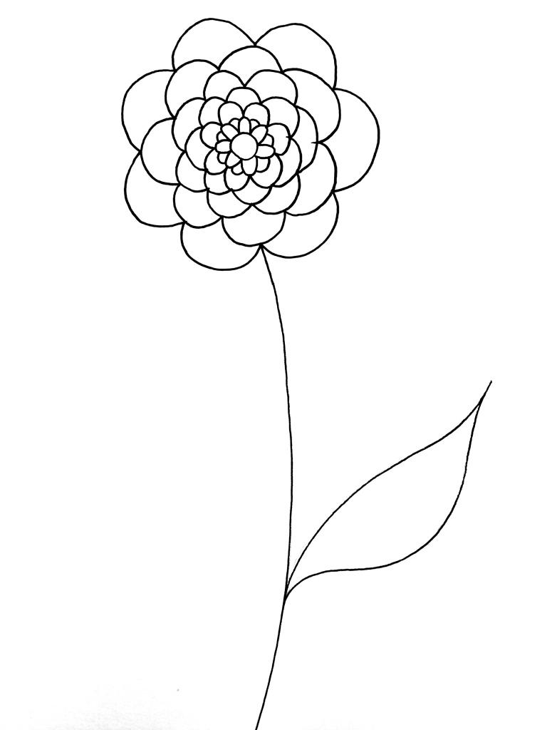 kevin rouxel Fleure au trait